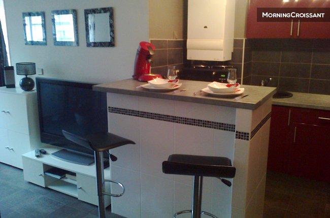 appartement meubl louer pau pau centre meubl stdin. Black Bedroom Furniture Sets. Home Design Ideas