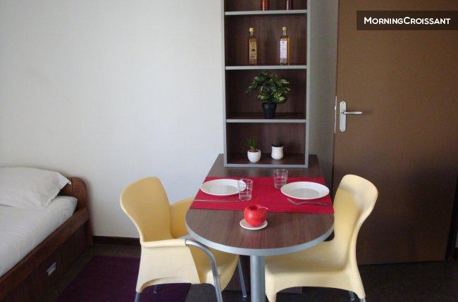 Appartement meubl louer lyon studio 1 personne for Appartement a louer meuble lyon
