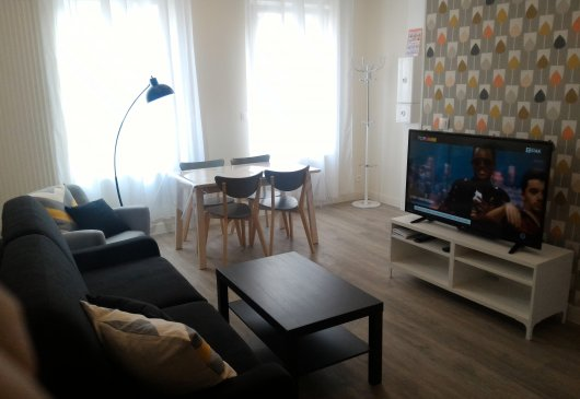 New Appart T2 Cozy 42m² à LILLE 4P