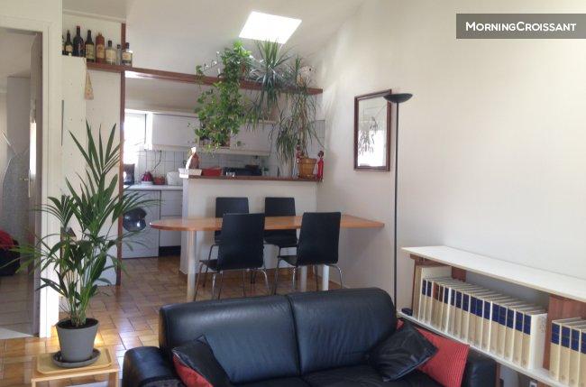 Appartement meubl louer avignon duplex climatis meubl - Location appartement meuble avignon ...