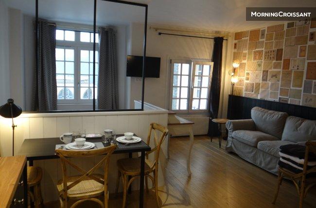 appartement meubl louer rouen hyper centre neuf impec. Black Bedroom Furniture Sets. Home Design Ideas