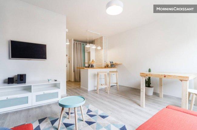 studio meubl louer toulouse tout confort scandinave. Black Bedroom Furniture Sets. Home Design Ideas