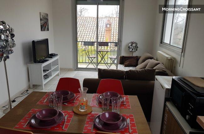 Appartement meubl louer toulouse appartement t3 meubl c t - Appartement a louer meuble toulouse ...