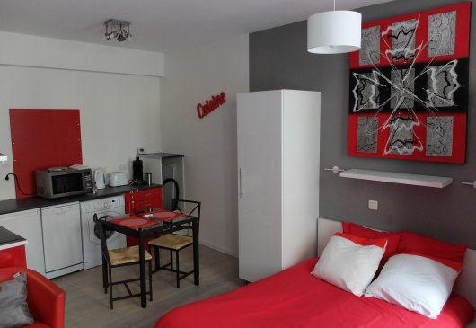 location appartement meuble pau
